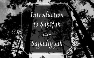 Imam Sajjad (a)